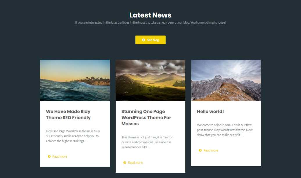 Illdy: A Free One Page WordPress Business Theme