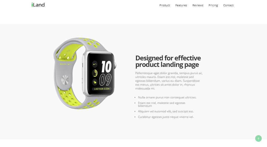 iLand: A Multipurpose Landing Product Page Template