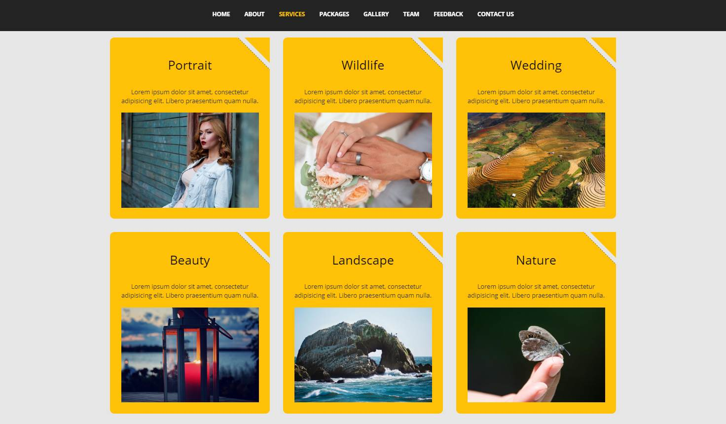 Focus: A Nice Photography Website Template