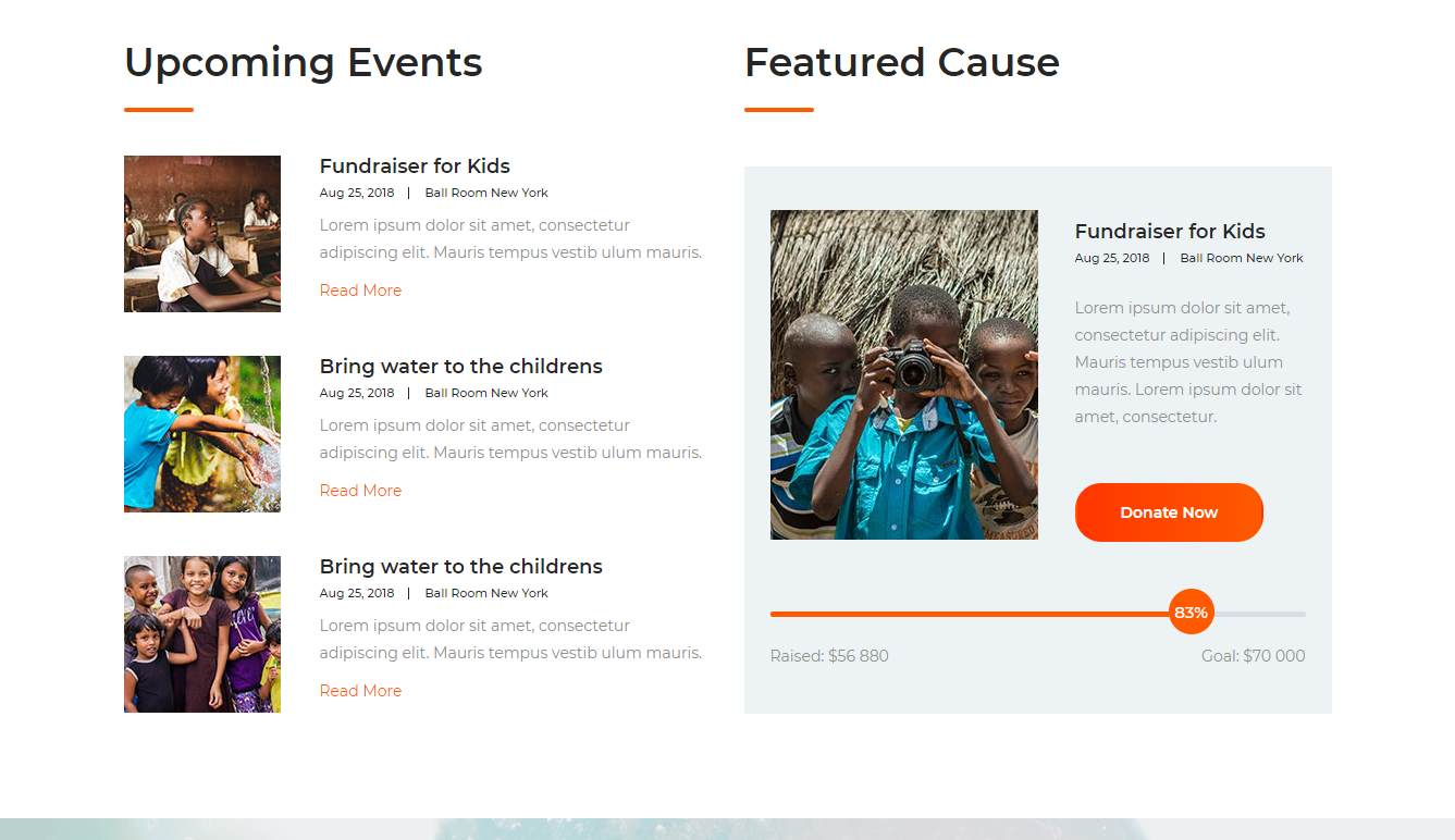 The Charity: a Non-profit Organization Website Template